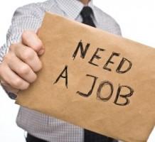 Поиск работы: правила составления резюме, навыки прохождения интервью